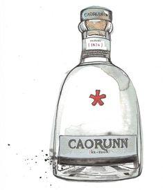 de winton paper co gin illustration caorunn gin illustration