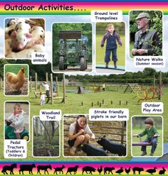 Outdoor Activities at Church Farm, Stow Bardolph, part of the 2014 leaflet. Pedal Tractor, Walking In Nature, How To Level Ground, Outdoor Play, Norfolk, Outdoor Activities, Printing Services, Day Trips, Cambridge