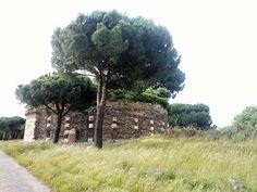 Via Appia Antica Country Roads, Italia
