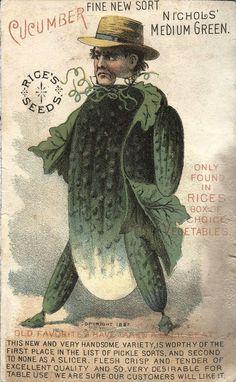 Rice's Seeds ~ Cucumber Advertising Card 1887 ~ Cambridge, NY    Nichols' Medium Green Cucumber Man