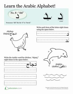 Learn the Arabic Alphabet: The complete beginner's guide