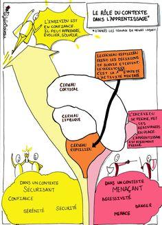 Pour apprendre, les menaces et l'agressivité sont inutiles, le cerveau reptilien a besoin de confiance et de sécurité : https://julieboiveau.wordpress.com/2015/06/28/apprendre-en-confiance/