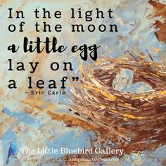 A lovely line from Eric Carle
