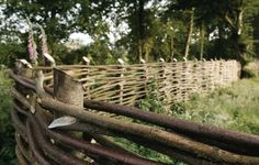 10 Stupendous Unique Ideas: Natural Fence Willow Branches pallet fence on a hill.Fence Painting Fun old fence garden.Pipe Fence And Gates. Fence Landscaping, Backyard Fences, Garden Fencing, Farm Fencing, Garden Trellis, Wattle Fence, Fence Gate, Rail Fence, Bamboo Fence