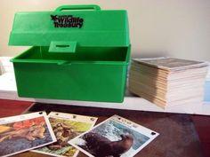 Wildlife Treasury Cards. I miss these