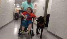 A few months ago Mason Burns' family and teachers realized that he needed a service dog. According to Fox 17, the $12,000 price tag was too much for the family. …