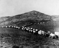 Wagon Train is a photograph by Granger which was uploaded on August . Native American Women, American War, Native American History, American Indians, Old West Photos, Oregon Trail, Oregon City, Pioneer Life, Into The West