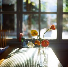 I used to take pictures when the summer light came into my cafe through the windows and as you can feelthat was my favourite thing to do d...