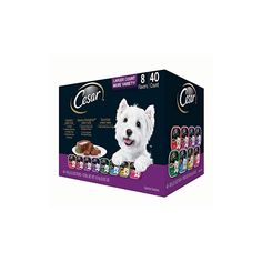Wet Dog Food, Dog Supplies, Juices, Small Dogs, Dog Food Recipes, Teddy Bear, Healthy, Coat, Awesome