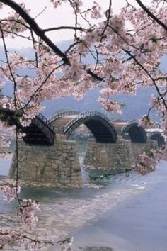 Kintai Bridge, Iwakuni, Japan Dying to go for cherry blossom season!!