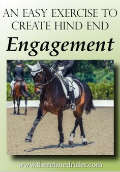 Use this EASY exercise to engage your horse's hind end. This tool also helps increase responsiveness and energy in a lazy horse. Andalusian Horse, Friesian Horse, Arabian Horses, Horse Riding Tips, Horse Tips, Dressage Horses, Draft Horses, Horse Therapy, Horse Exercises