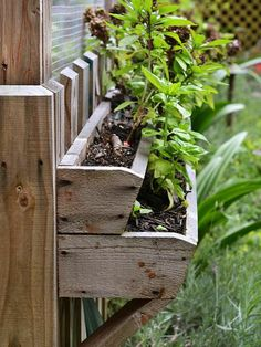 Tiered strawberry boxes work as exterior window boxes for herbs and ornamentals that the critters won't want to disturb.