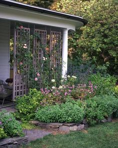 Vertical Rose Gardening A fragrant, disease-resistant 'New Dawn' rose climbs the latticework that screens the east-facing porch ell of this garden. - Dress up your garden with colorful blooms, charming pots, and more. Backyard Plants, Garden Landscaping, Backyard Privacy, Porch Privacy, Garden Privacy, Backyard Patio, House Plants, Privacy Plants, Privacy Trellis