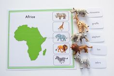 A total of 21 activity sheets! This is a Nienhuis inspired Montessori geography material in learning animals thriving in each 7 continents (Asia, Africa, Austr Activities For Boys, Animal Activities, Kindergarten Activities, Learning Activities, Continents Activities, Les Continents, Elmer The Elephants, Montessori Preschool, Montessori Elementary
