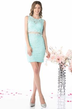 Illusion Two Piece Cocktail/Party Dress