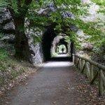 Via Verde La senda del Oso, Tuñon - Entrago. Asturias