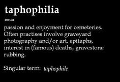 Taphophilia --- passion and enjoyment for cemeteries.  Often practices involve graveyard photography and/or art, epitaphs, interest in [famous] deaths, gravestone rubbibg.