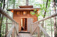 Tree house entrance.