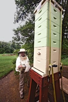 Bees at the White House!