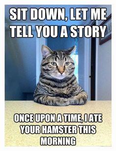 Hilarious story :D