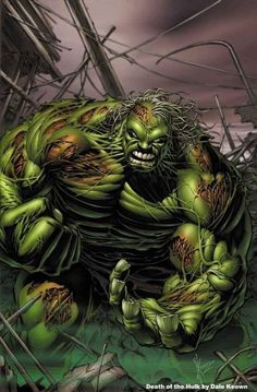 The Death of Hulk by Dale Keown *
