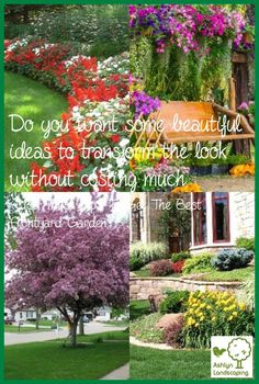 Organically Grown Designing Low Maintenance Front Yard Ideas Advice To Grow The Garden Of Your Dreams Landscape Design, Garden Design, Yard Stones, Low Maintenance Landscaping, Back Gardens, Landscape Lighting, Front Yard Landscaping, Garden Paths, Curb Appeal