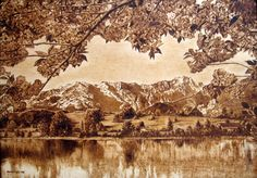 Generally not a HUGE fan of landscapes in pyrography...but the reflection on the water...