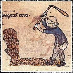 A Feast For The Eyes A thresher with his flail; the month of August. Medieval Crafts, Medieval Books, Medieval World, Medieval Manuscript, Medieval Art, Illuminated Manuscript, Renaissance, Rainy City, Wars Of The Roses