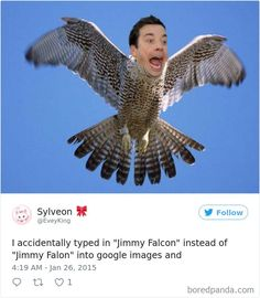 Times People Accidentally Googled The Wrong Thing, And The Results Were Hilarious – 100 Pics