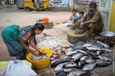 India 2014 #fotografiacs #CarlosSantosFotografia #india