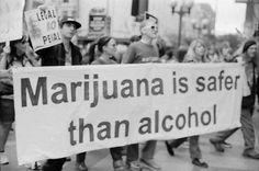 Marijuana Is Safer Than Alcohol