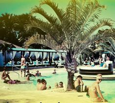 Win an All-Inclusive Trip for Two to Groove Fest 2015 in the Dominican Republic