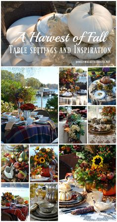 A Harvest of Fall Table Settings and Inspiration   homeiswheretheboatis.net
