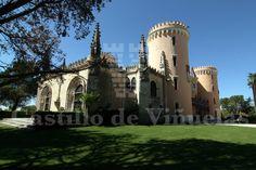 Castillo de Viñuelas (Soto de Viñuelas)