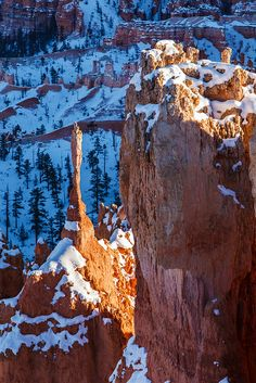 Winter Sentinel, Bryce Canyon National Park, Utah | Photo by James Marvin Phelps on Flickr | Permission: CC BY-NC 2.0 http://creativecommons.org/licenses/by-nc/2.0/deed.de