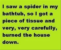 Dear Spider,  You win. You can keep the house. I don't want it. And because I can't muster the courage to make you leave, I shall. Good bye,  Gone forever  P.S. Please don't follow me because I don't like you.