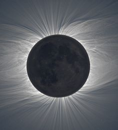this isnt happiness™ (Total eclipse), Peteski