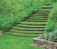 Kinsman Garden - Stepway made with EverEdge Permanent Lawn Edging