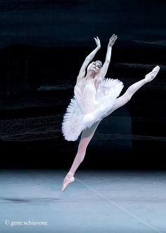 """Svetlana Zakharova, """"Swan Lake"""", Bolshoi Ballet - Photo by Gene Schiavone Svetlana Zakharova, Bolshoi Ballet, Ballet Dancers, Contemporary Dance, Modern Dance, Swan Lake Ballet, Ballet Performances, Ballerina Project, Misty Copeland"""
