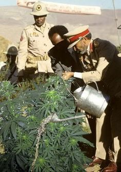 Haile Selassie watering the plants.