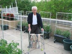 Inside Urban Green: Senior Gardening