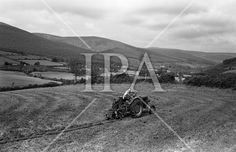 World Ploughing Championship at Kilmacanogue, Co. Wicklow..17.07.1962 See more photos like this at www.irishphotoarchive.ie #vintage #oldphotos #blackandwhite #film #artistic #finearts #ireland #irishhistory #historyphoto #history
