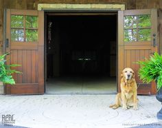 These double Dutch doors were installed on a horse barn in Essex, Ontario, Canada.