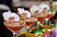 This week in the cocktail blog an orchid in the cocktail http://nuevamixologiacolombiana.blogspot.com/2015/02/signature-cocktails-clxi-la-flor-de.html