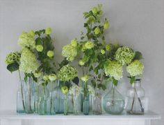 bits of green and white