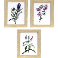 Lark Manor Lavender Wildflowers 3 Piece Framed Print of Painting Set