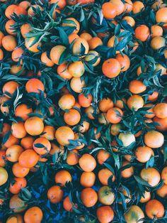 Hello orange.