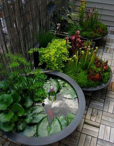 85 Awesome Backyard Ponds and Water Garden Landscaping Ideas Herrliche 85 fantastische Hinterhof-Tei Container Water Gardens, Container Gardening, Water Containers, Container Pond, Small Water Gardens, Gardening Tools, Gardening Gloves, Vegetable Gardening, Flower Gardening