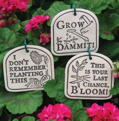 Perfect for the garden...that I keep saying I'll plant
