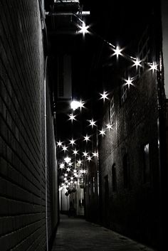 Starry alleyway in Belfast Yule, Oh The Places You'll Go, Places To Visit, Alleyway, Believe In Magic, Ireland Travel, Beautiful Places, Scenery, Around The Worlds